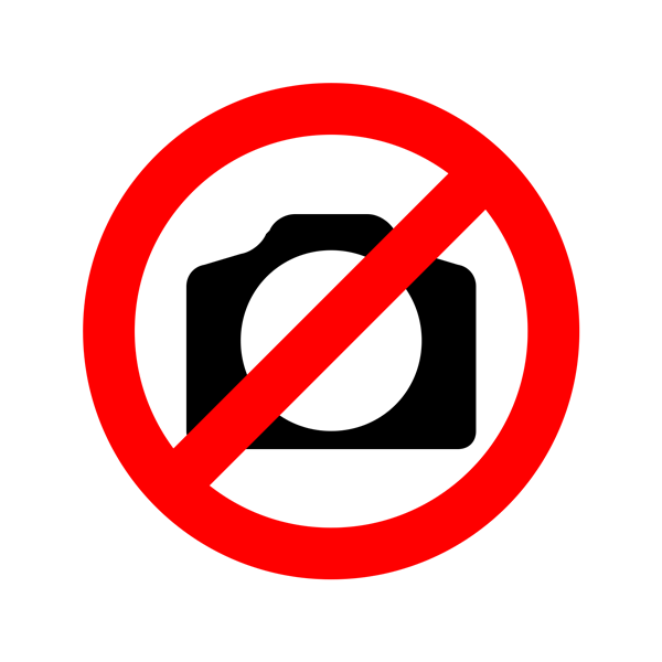 Цифровые власти разогнали модный митинг Жириновского